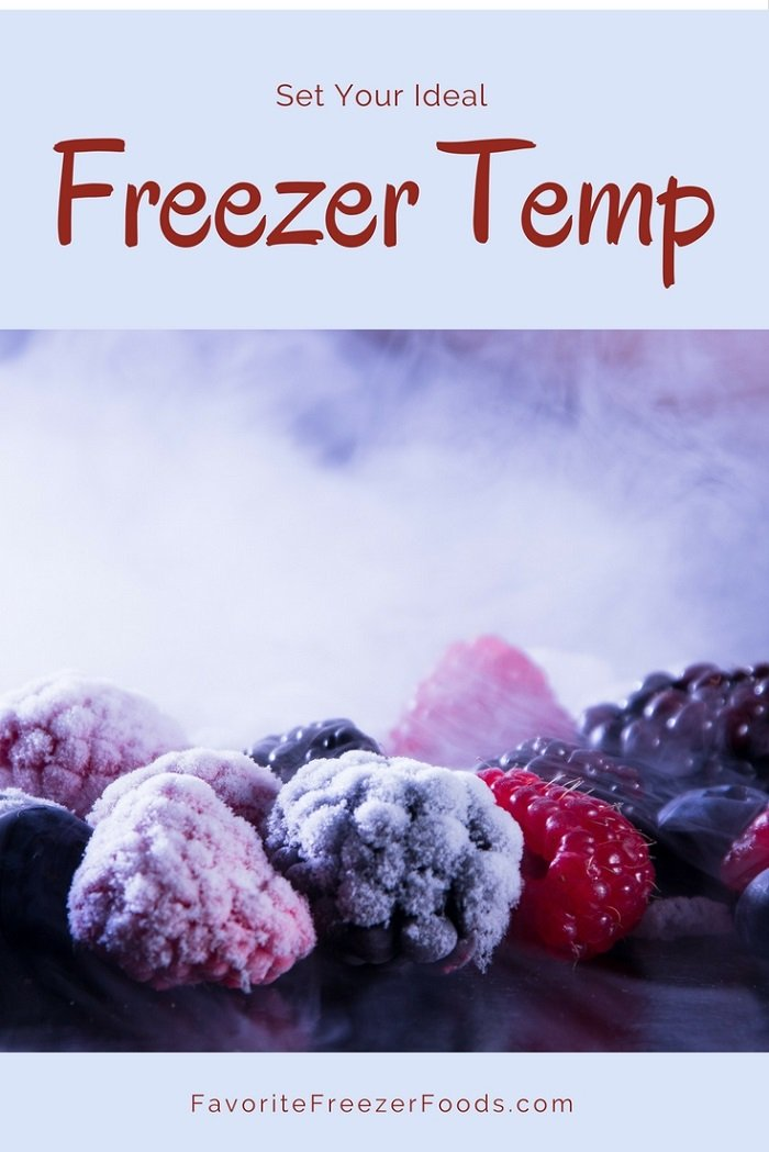 What Temperature Should Frozen Food Be Stored Celsius